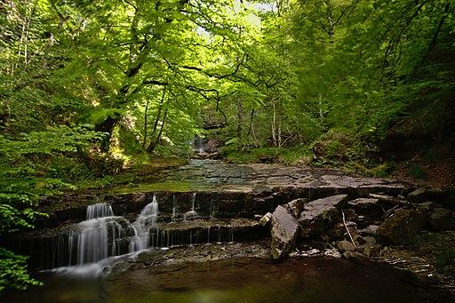 Cascadas en el río Argoza 01