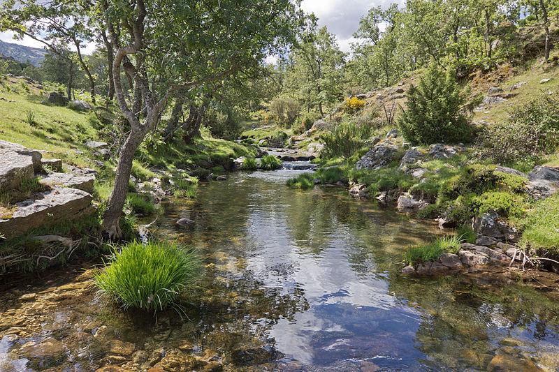 Archivo:Arroyo del Aguilón, río Lozoya - 01.jpg