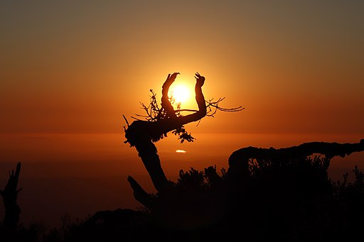 Por do sol - Serra da Lousã 1